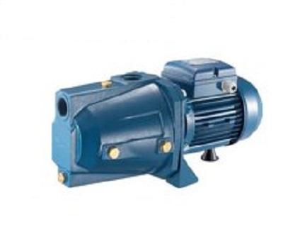 Máy bơm nước đầu lợn Pentax CAM 100 (750w)